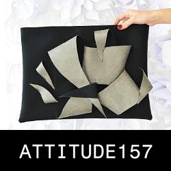 attitude157